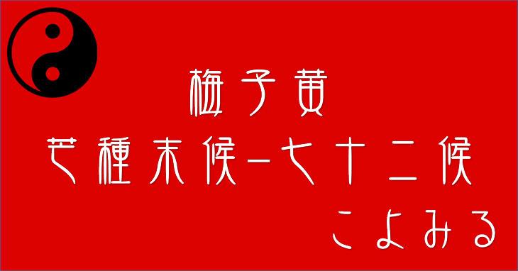 梅子黄(うめのみきばむ)-芒種-末候-七十二候-第二十七候